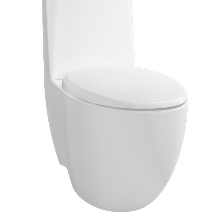 toilet mampet